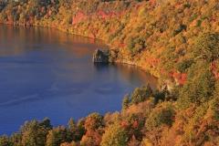 十和田湖 周遊コース